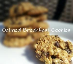 breakfast cookies 2