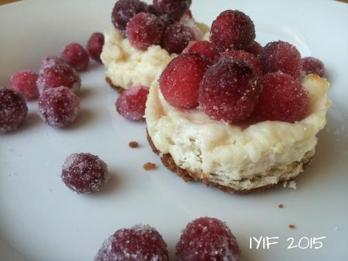 cranberry cheesecake7