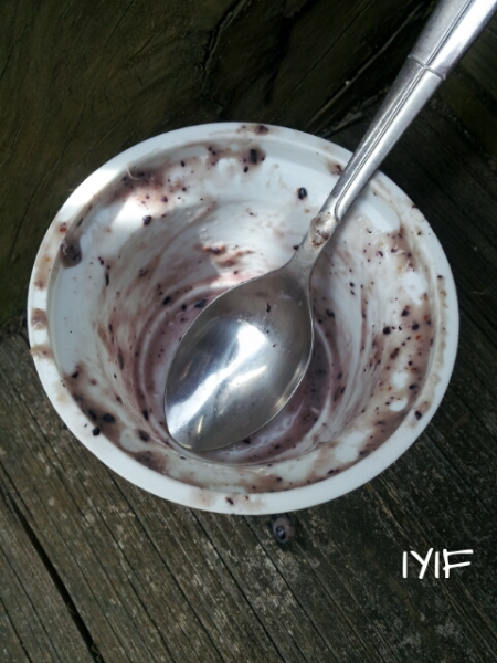 blueberry ice cream4