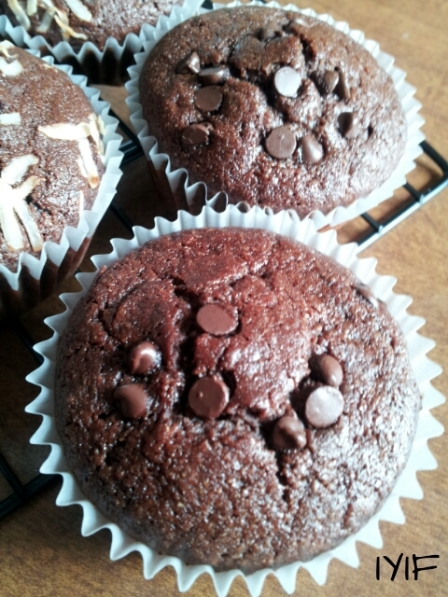 double chocolate muffins10