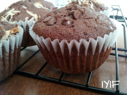 double chocolate muffins9