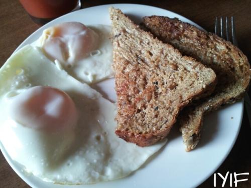 fried egg2