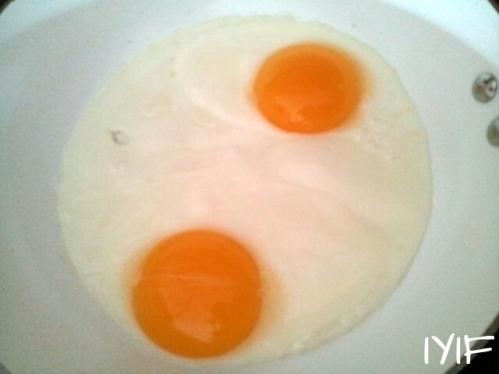 fried egg4