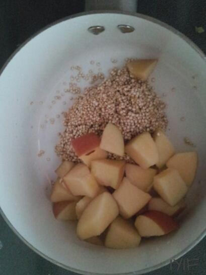 apple-quinoa7