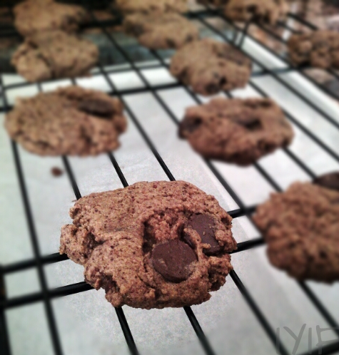 chocolate-chip-cookie5