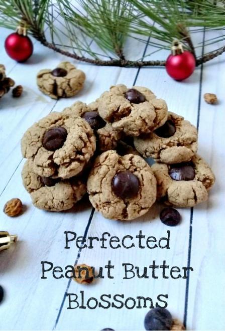 peanut+butter+blossoms+tiger+nuts12